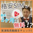 [2ヶ月無料]U-mobile トライアルキャンペーン