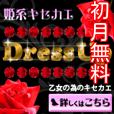 [初月無料]DressUp(500円コース)
