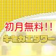 [初月無料]キセカエタワー(500円コース)