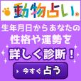 動物占いR[300円コース]