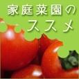 ★全額還元★  【SP対応】家庭菜園のススメ(500円コース)