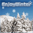 Enjoy Winter(5000円コース)
