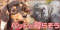 ペットと暮らそう(5000円コース)